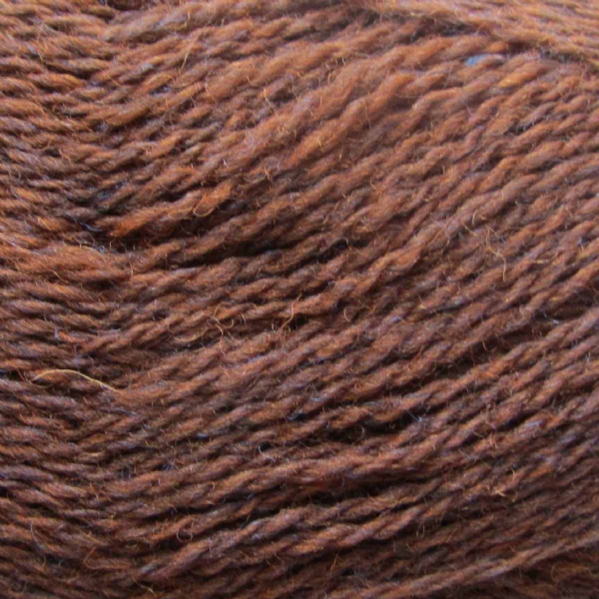 Japansk ribvariation, highland wool-31