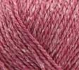 rosa 03